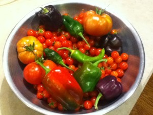 Colorful Veggie Harvest
